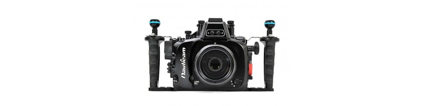 EVIL Fujifilm
