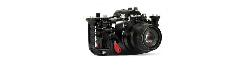 Réflex Canon